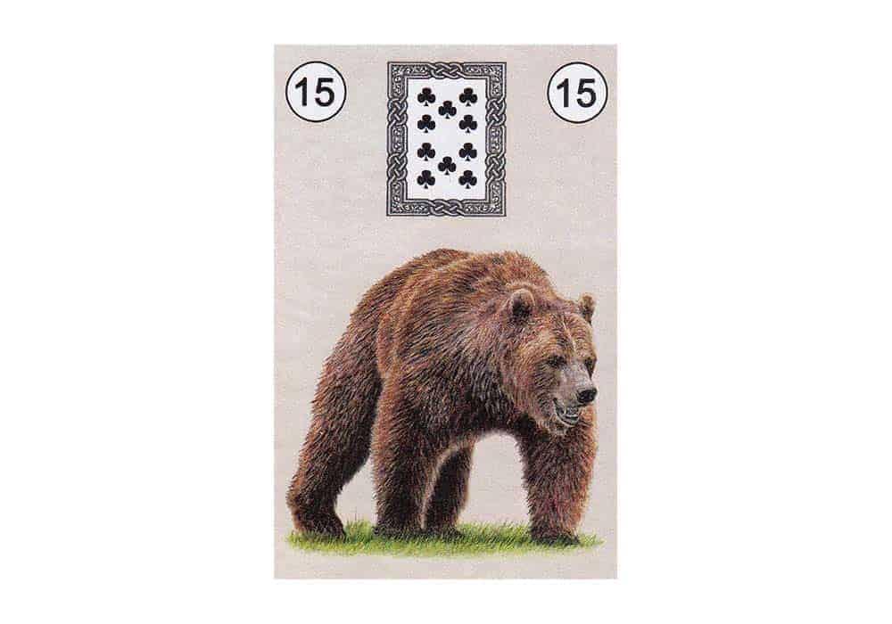 tajne-tarota-lenormand-medvjed