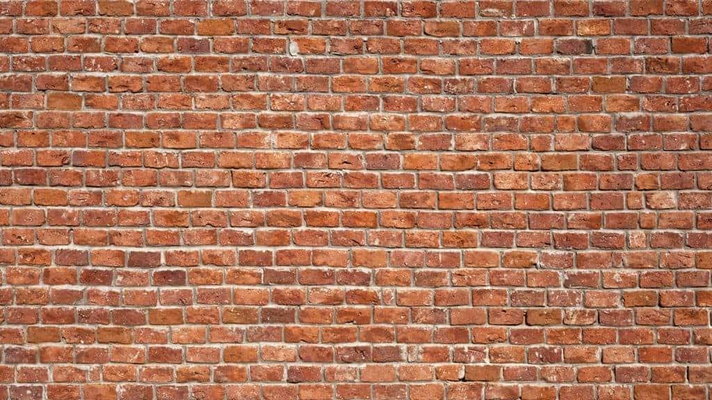 Živi zid