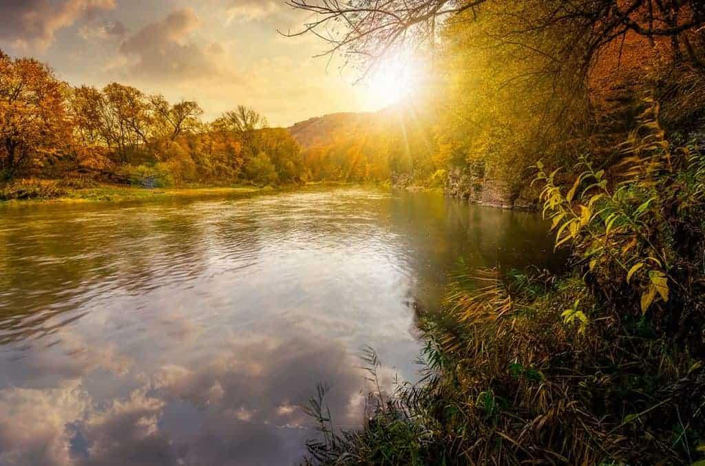 Utjecaj solarne eklipse na poznate osobe rođene u znaku jarca, vodenjaka i riba