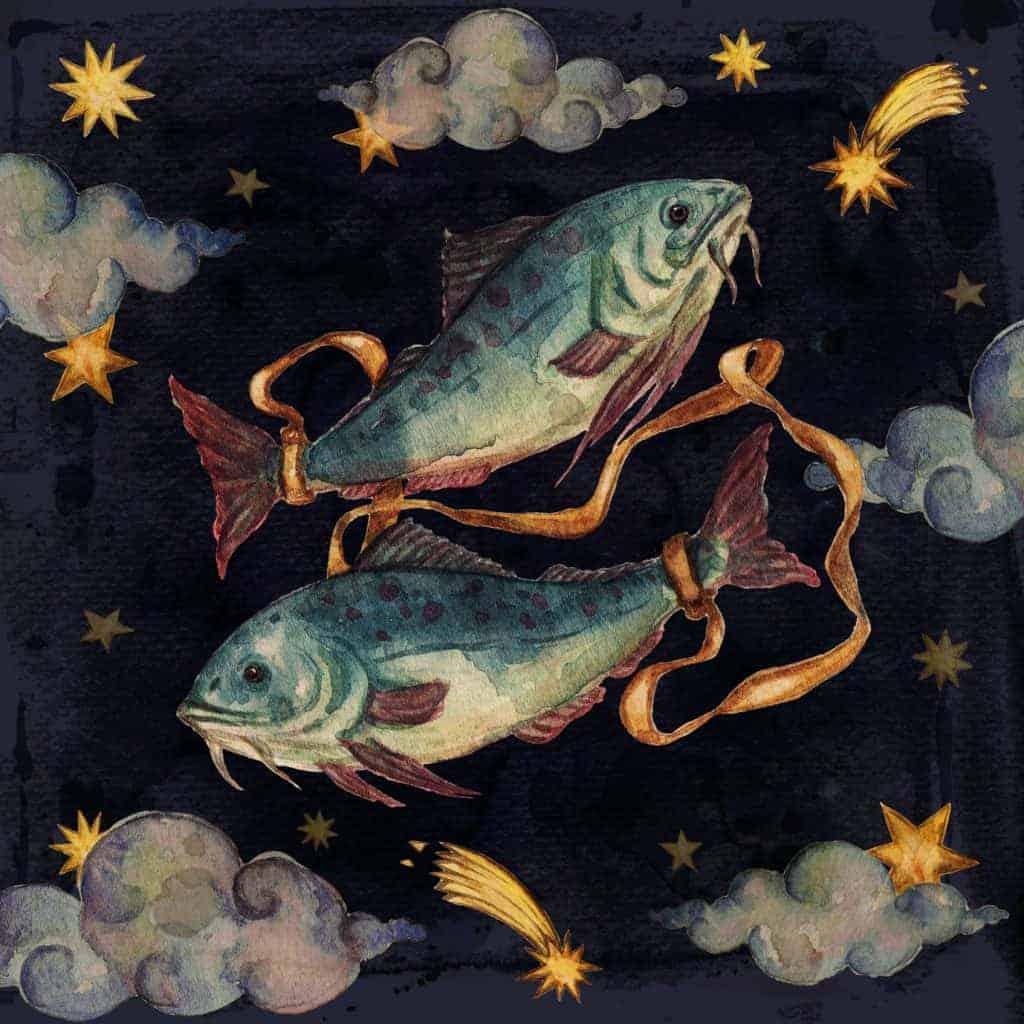 Inger Stojberg i mračna strana znaka Riba